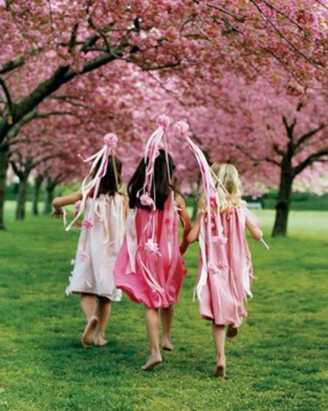 Alternative Flower Girl Basket Ideas : Flower girls ring bearers girl basket