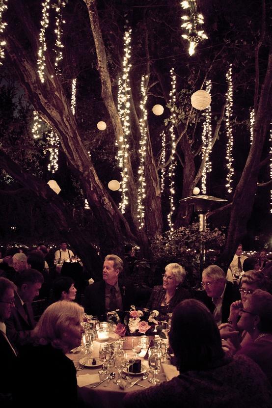 Nighttime Backyard Party Ideas : Wedding Lights  Wedding Light Options #1071045  Weddbook