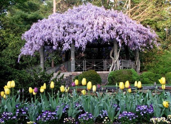 Hochzeit - Garten-Paradies