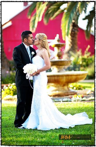 Wedding - Fountainhead