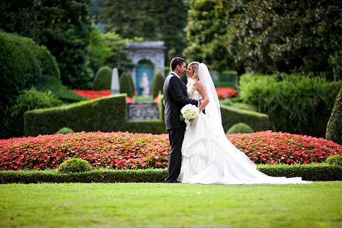 Wedding - Best Job In The World
