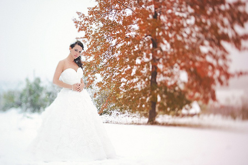 Fall or winter wedding