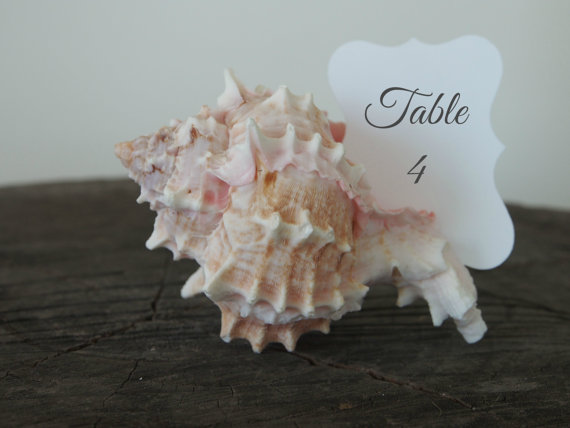 Mariage - Shell Table Numbers, Wedding Table Decorations, Beach Wedding, Sea, Ocean Destination, Pink White Sand Escort Card Decor, Spring, Summer - 1 - New