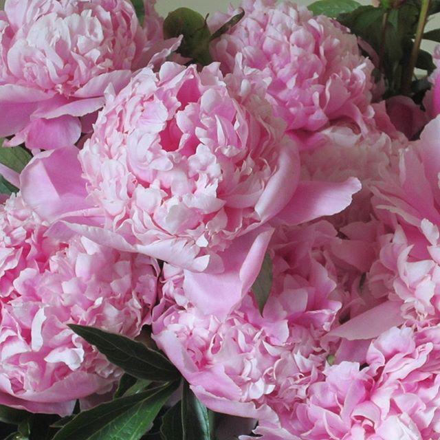 Hochzeit - Pink Flowers
