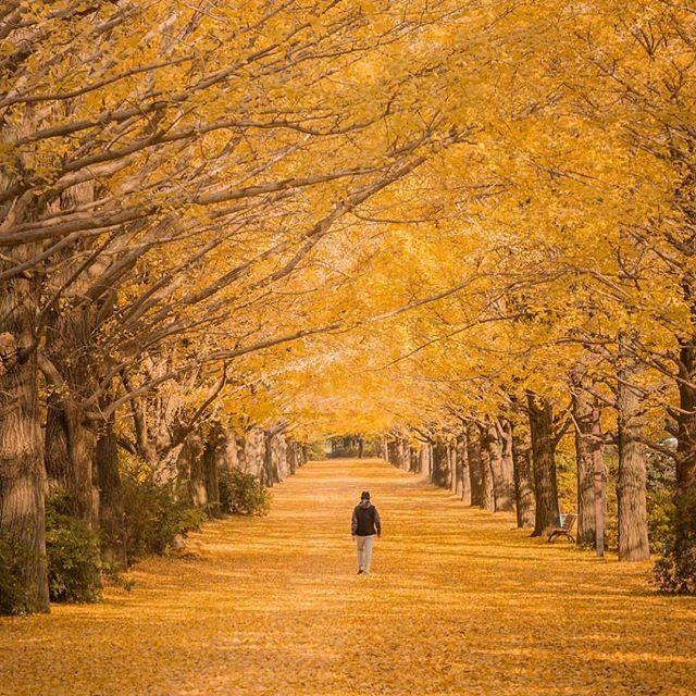 Mariage - Japan Place