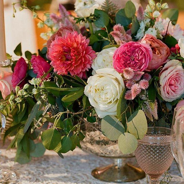 Wedding - Amaryllis Inc.