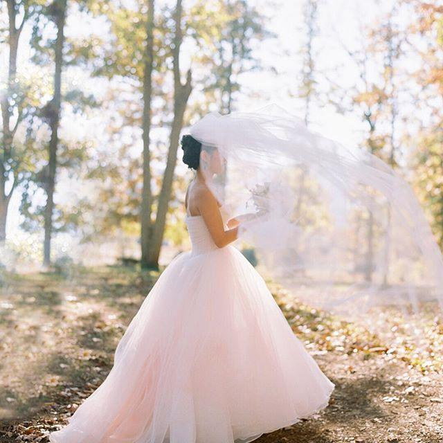 Mariage - Abby Jiu