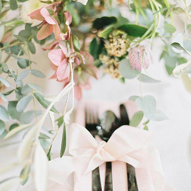 زفاف - Wedding Sparrow