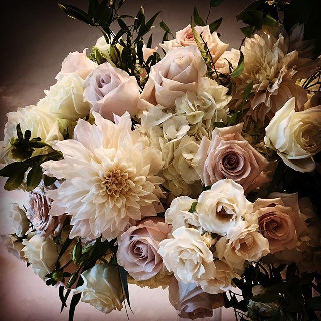 زفاف - Alex