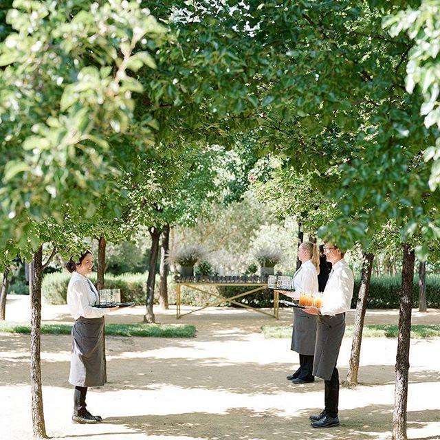 Düğün - joel serrato
