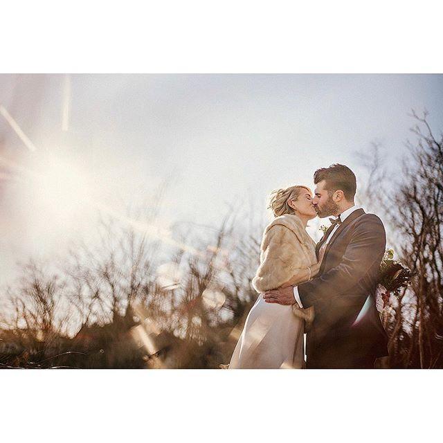 Wedding - Douglas Polle