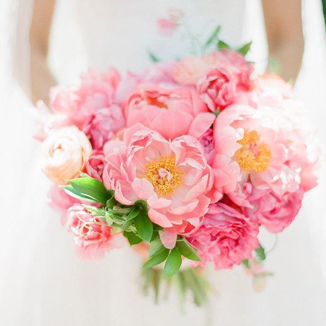 زفاف - Bespoke Bride