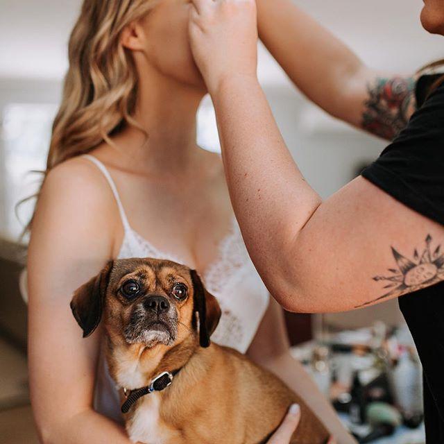 زفاف - Polka Dot Bride