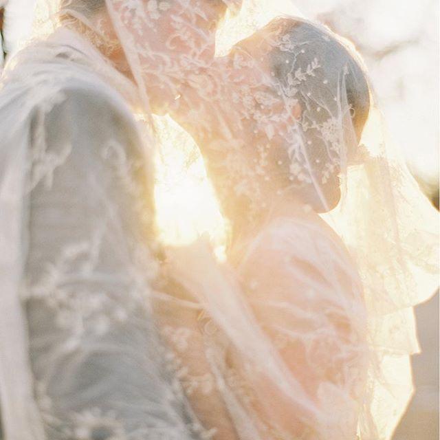 زفاف - Katie Stoops