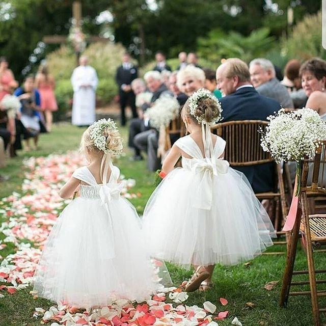 زفاف - • Luxury Wedding Pages •