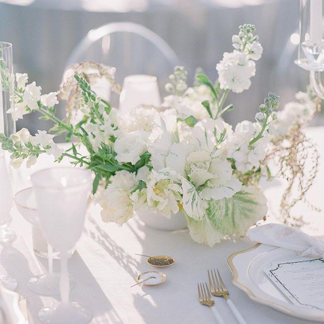 Свадьба - Corbin Gurkin