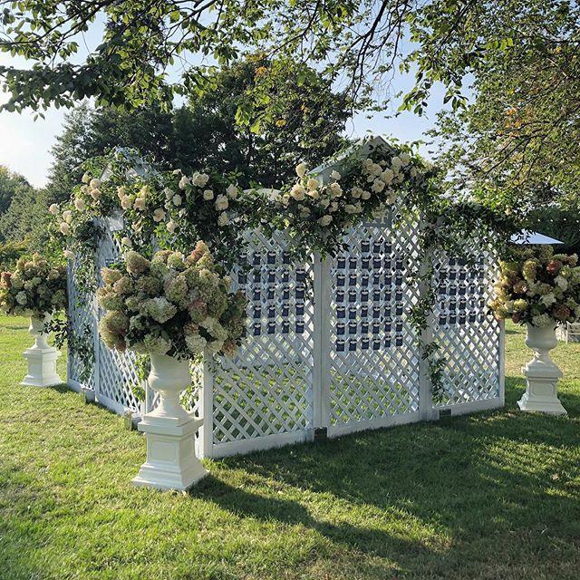 Свадьба - Amaryllis Inc.