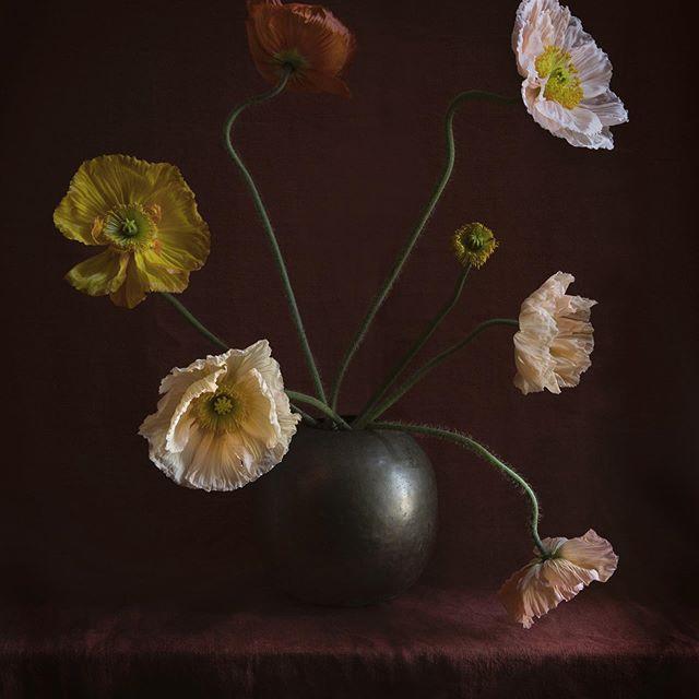 زفاف - Ariel Dearie Flowers
