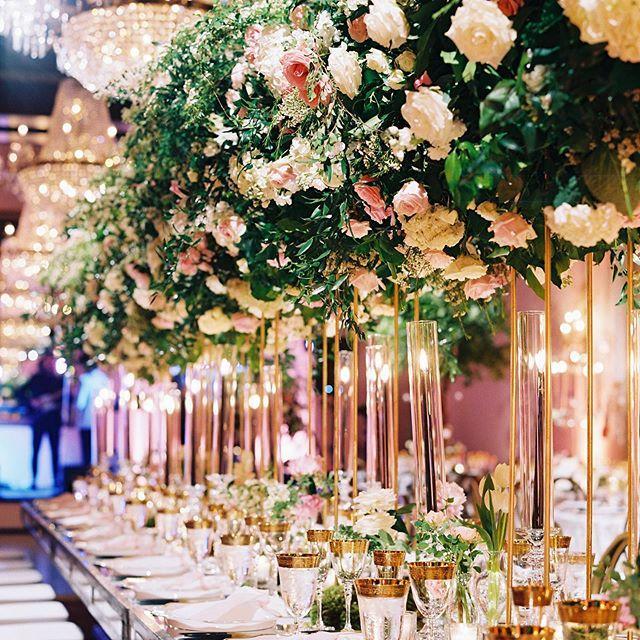 Hochzeit - Amaryllis Inc.