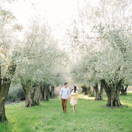 Wedding - ⚡️D E L B A R R ⚡️