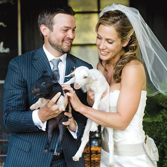 زفاف - مع الحيوانات الأليفة