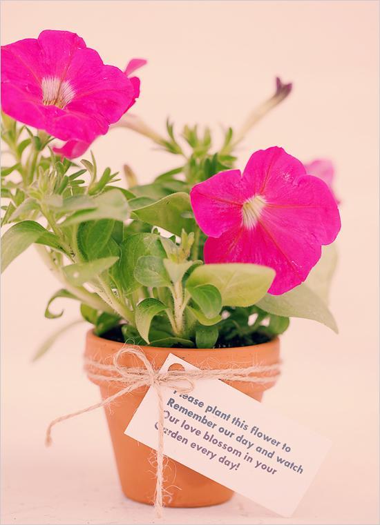 Flowers For Bridal Shower Favors : Eco wedding friendly flowers  weddbook