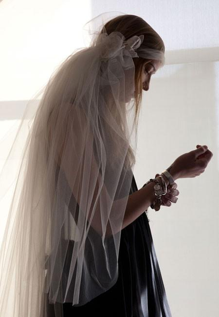 image of The Veil