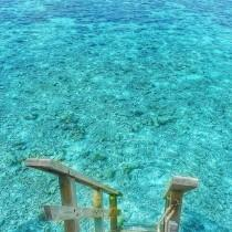 wedding photo - Maldives Beauty