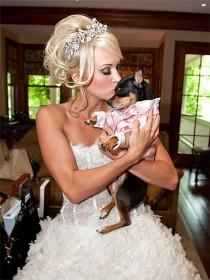 wedding photo -  With Pets