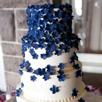 wedding photo -  Navy Blue Wedding Color Palettes