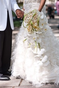 wedding photo - The Wedding Dress